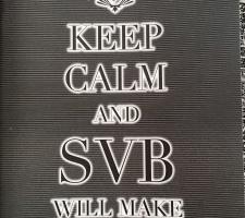 Vihik SVB2